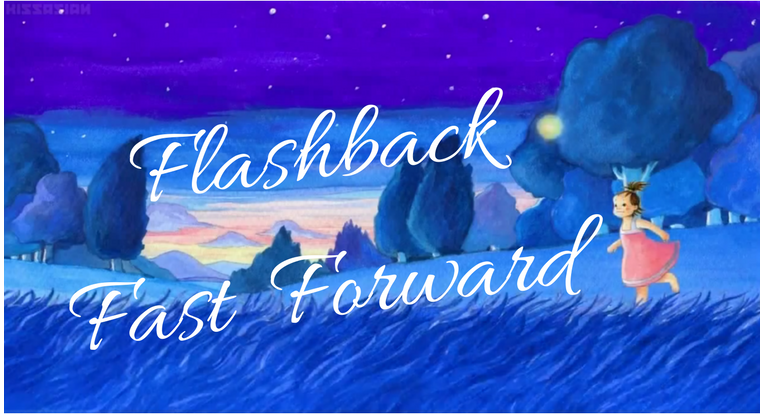 Flashback Fast Forward Diary
